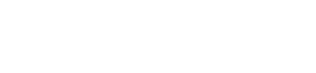 Isomorphic software